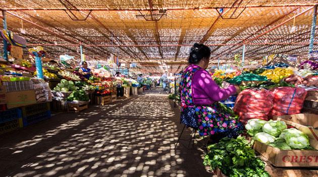 Feria Asoagro