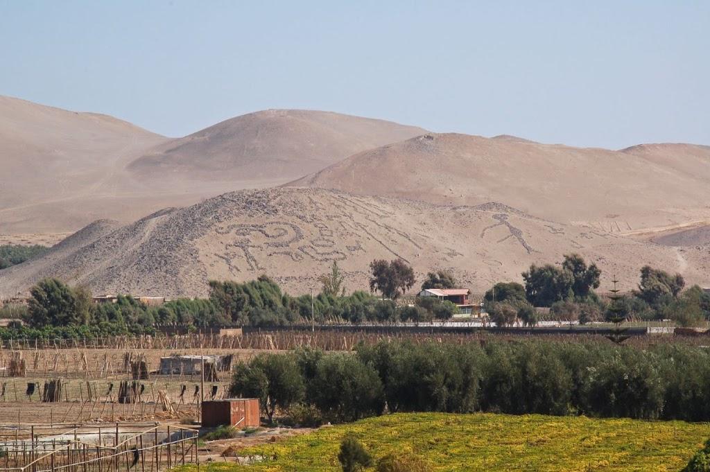 Valle de Azapa y su famoso Museo Arqueológico